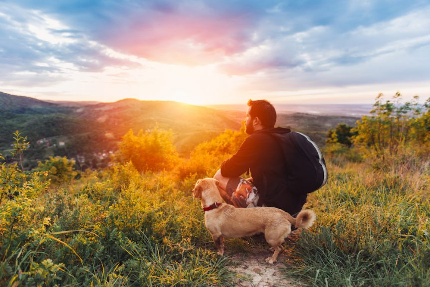 Georgia Proof Emotional Support Animal