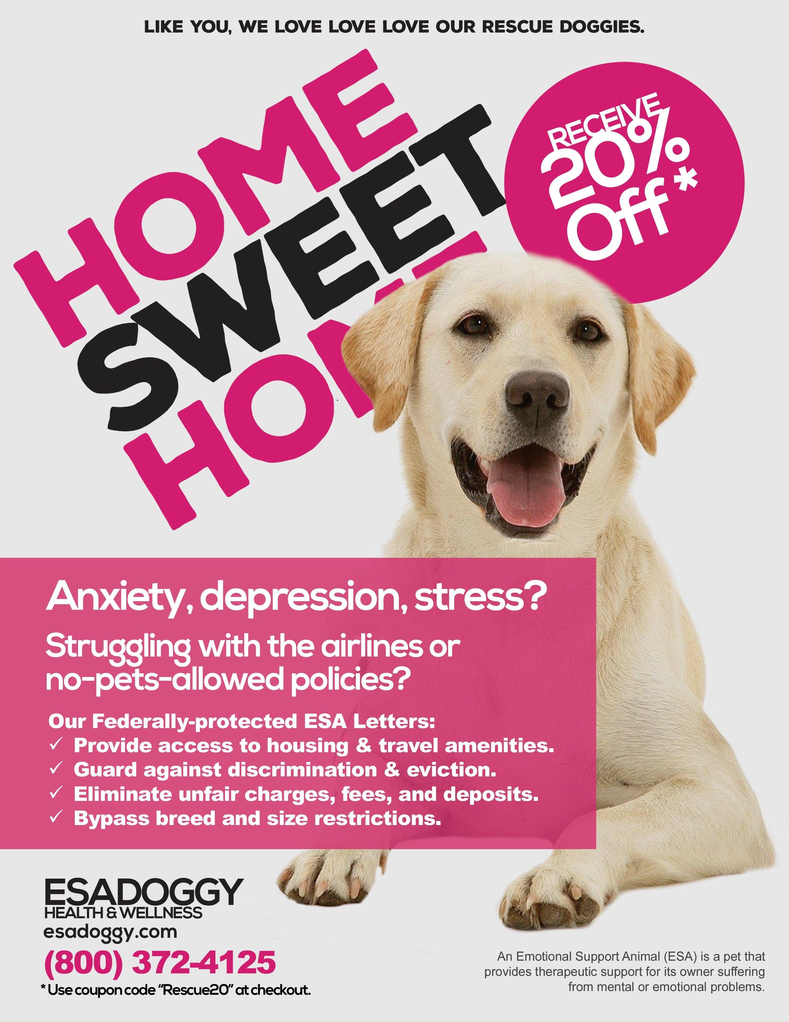 ESADoggy Animal Shelter Leaflet