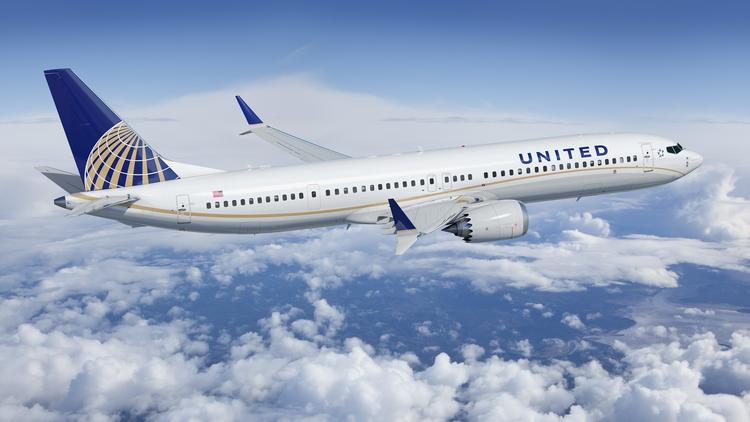 United Airlines Petsafe Pet Air Transportation Guidelines