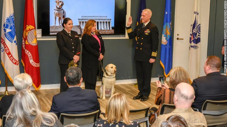 Bush's former service dog Sully has a new job