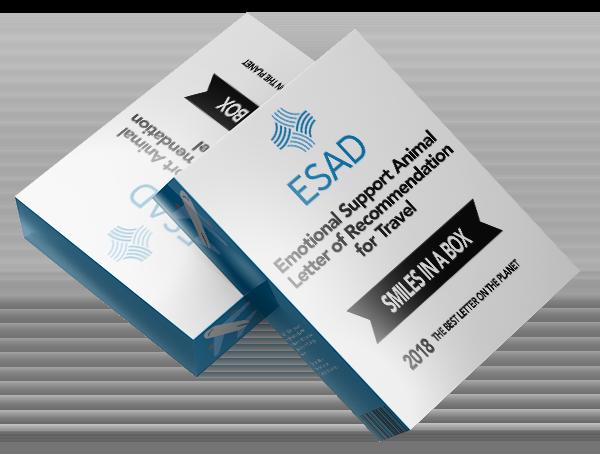 ESAD Travel Assessment Boxart