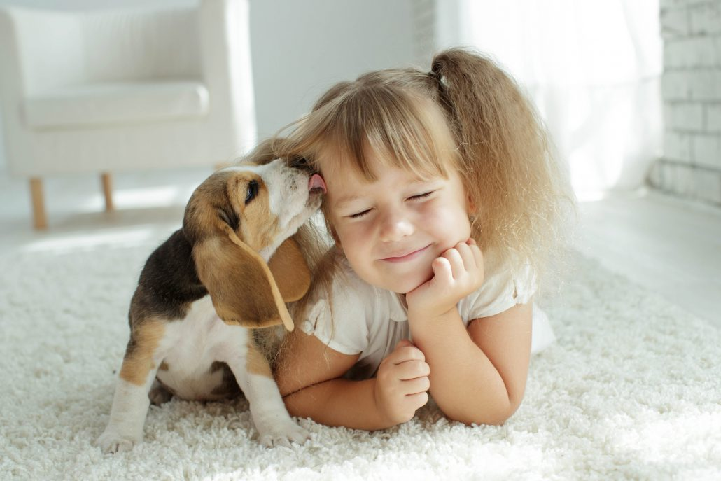 Emotional Support Animal as Stress Relief for Kids