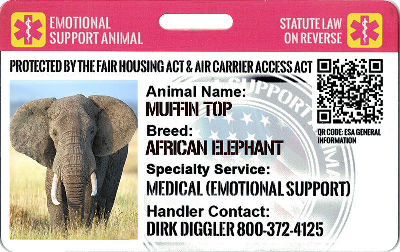 Irvine California Emotional Support Animal Id Card Esad Int L Esadoggy